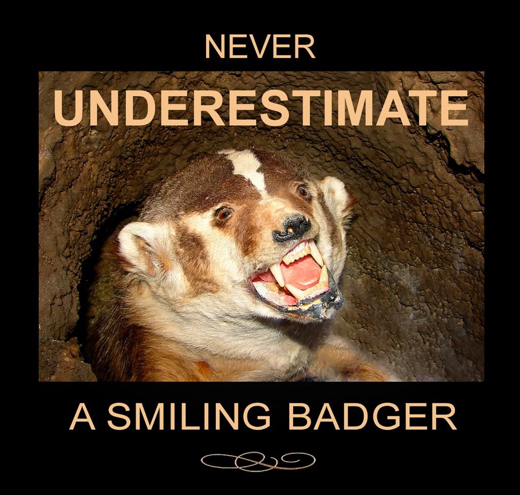 Blog Badger